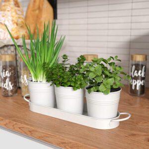 Enchanting Planter -FIKA- Set of 4 ( 3 pots +1 tub)- New