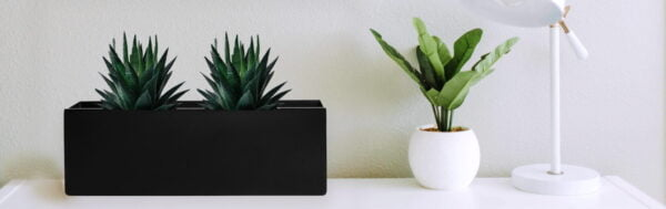 rectangle planter gallery