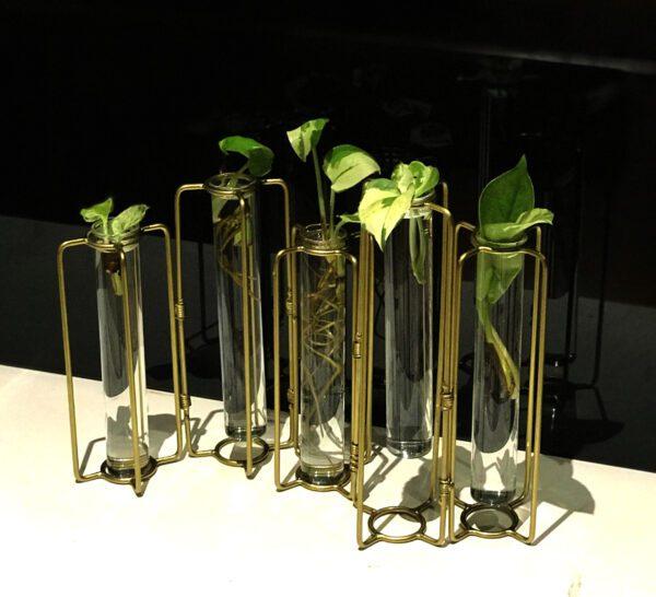 test tube planter