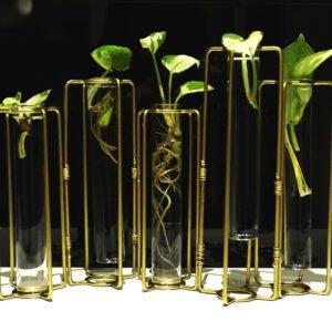 Exclusive Metal / Glass Test Tube Planter Set of 5 test tubes
